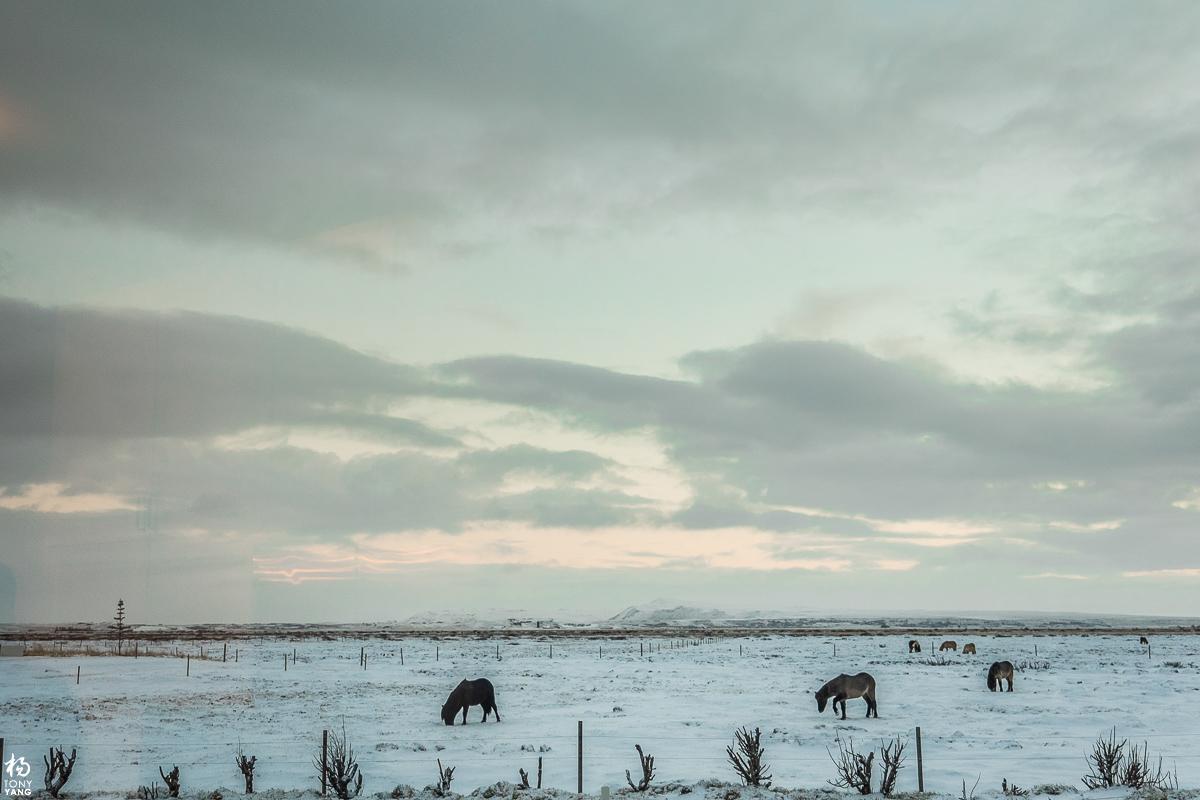 iceland-265